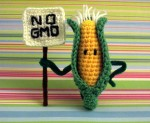 NO GMO CORN MONSANTO