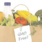 NON GMO SHOPPING GUIDE