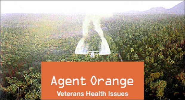 an introduction to the history of agent orange The use of agent orange in the vietnam war and its effects on the vietnamese people introduction overall damage from the use of agent orange 1 alvin young, the history, use.